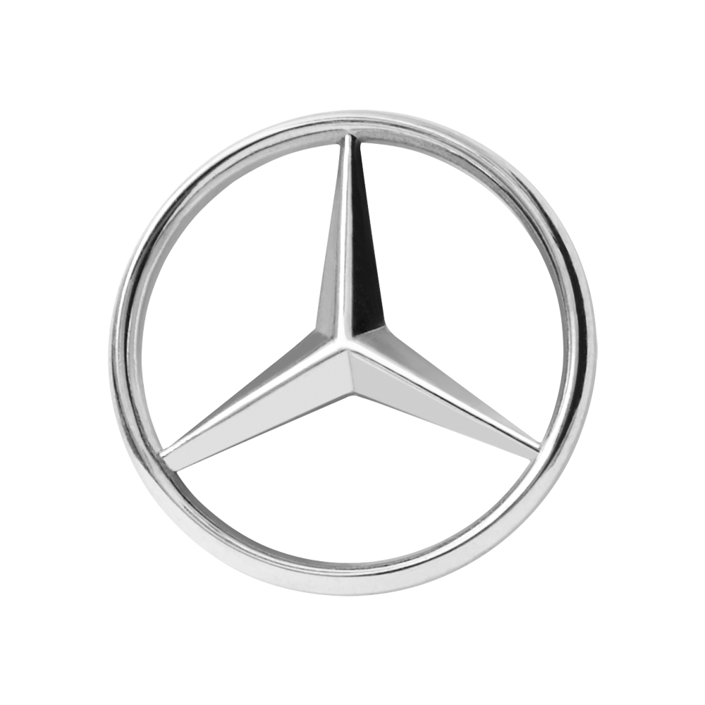 Rent this Mercedes with driver in Paris